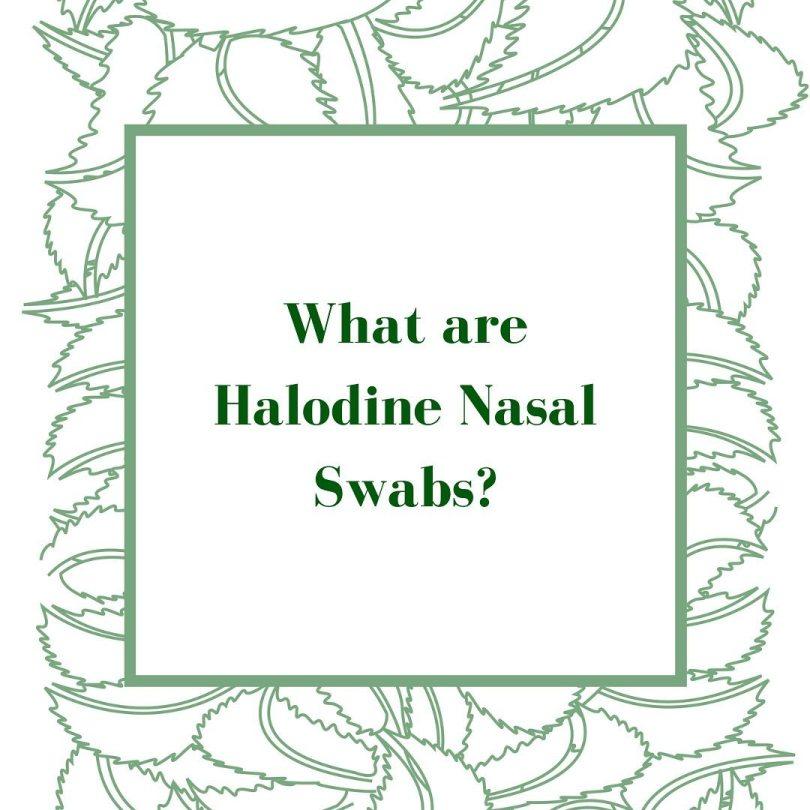 Halodine Nasal Swab at Thompson Chemists